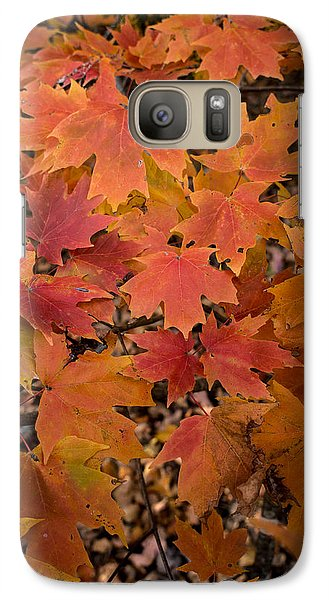Galaxy Case featuring the photograph Fall Maples - 03 by Wayne Meyer