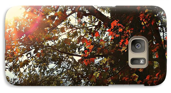 Galaxy Case featuring the photograph Fall Sun by Candice Trimble