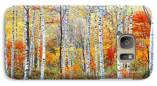 Fall Trees, Shinhodaka, Gifu, Japan Galaxy Case by Panoramic Images