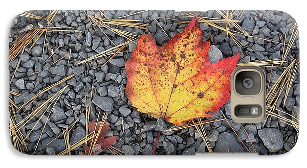 Galaxy Case featuring the photograph Fallen Leaf by Dora Sofia Caputo Photographic Art and Design