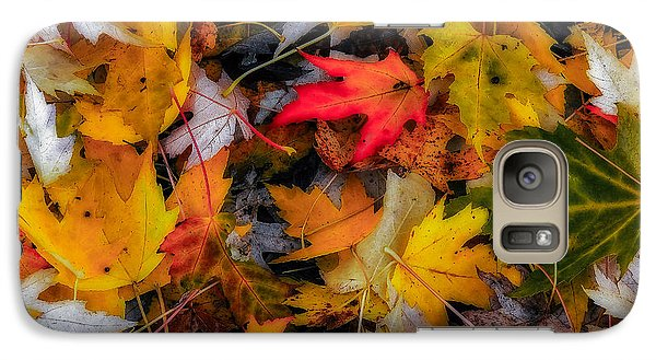 Galaxy Case featuring the photograph Fallen Leaves by Dennis Bucklin