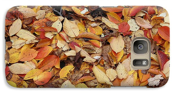 Galaxy Case featuring the photograph Fallen Leaves by Dora Sofia Caputo Photographic Art and Design