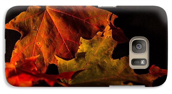 Galaxy Case featuring the photograph Fallen Leaves by Judy Wolinsky