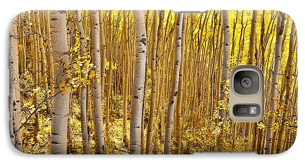 Galaxy Case featuring the photograph Fall's Golden Light by Steven Reed