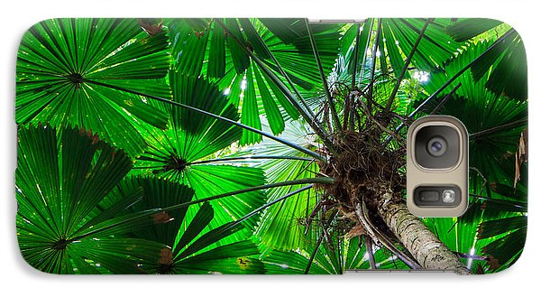 Galaxy Case featuring the photograph Fan Palm Tree Of The Rainforest by Peta Thames