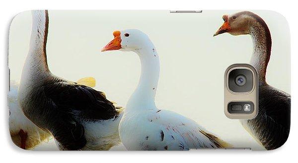 Galaxy Case featuring the photograph Farm Geese 2 by Lynda Dawson-Youngclaus