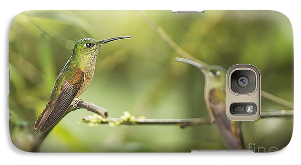 Galaxy Case featuring the photograph Fawn-breasted Brilliant Hummingbirds by Dan Suzio