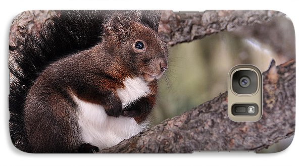 Galaxy Case featuring the photograph Fearful by Simona Ghidini
