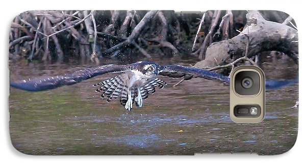 Galaxy Case featuring the photograph Fearless Flight by Kicking Bear  Productions