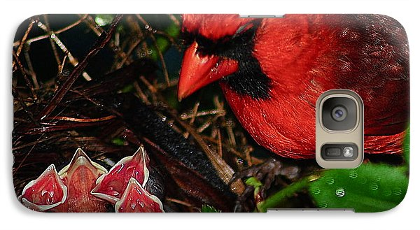 Bluejay Galaxy S7 Case - Feed Me Daddy by Frozen in Time Fine Art Photography