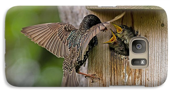 Feeding Starlings Galaxy S7 Case by Torbjorn Swenelius