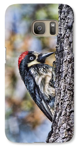 Galaxy Case featuring the photograph Female Acorn Woodpecker - Phone Case Design by Gregory Scott