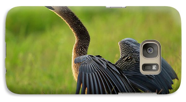 Anhinga Galaxy S7 Case - Female Anhinga Drying Out Wings by Maresa Pryor