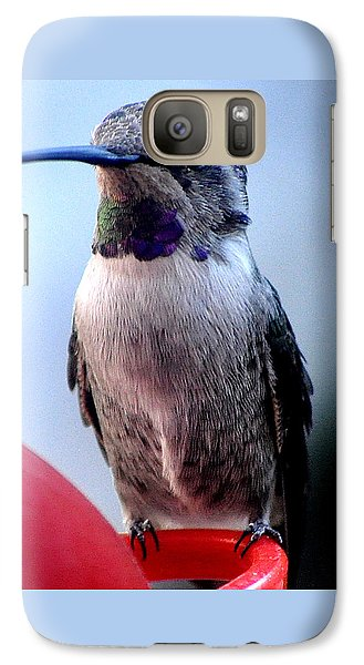 Galaxy Case featuring the photograph Female Anna With Purple Blue Throat by Jay Milo