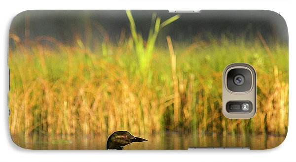 Loon Galaxy S7 Case - Female Common Loon With Newborn Chick by Chuck Haney