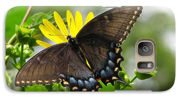 Galaxy Case featuring the photograph Female Dark Form Swallowtail Butterfly  by Eva Kaufman