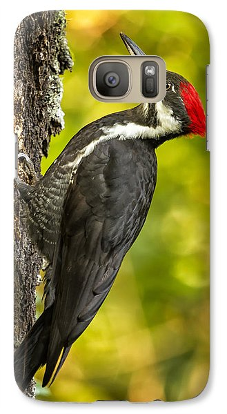 Female Pileated Woodpecker No. 2 Galaxy S7 Case