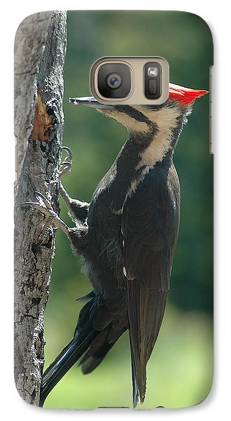 Galaxy Case featuring the photograph Female Pileated Woodpecker by Sandra Updyke
