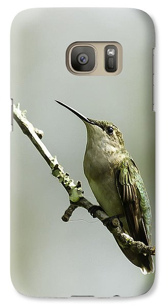 Galaxy Case featuring the photograph Female Ruby-throated Hummingbird 1 by Kathy Ponce
