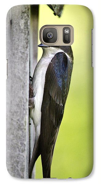 Tree Swallow On Nestbox Galaxy S7 Case by Christina Rollo