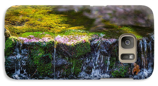 Galaxy Case featuring the photograph Fern Spring by Mike Lee