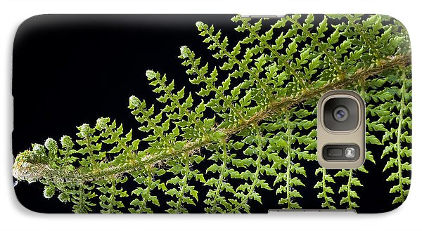 Galaxy Case featuring the photograph Fern With Raindrop 2 by Trevor Chriss