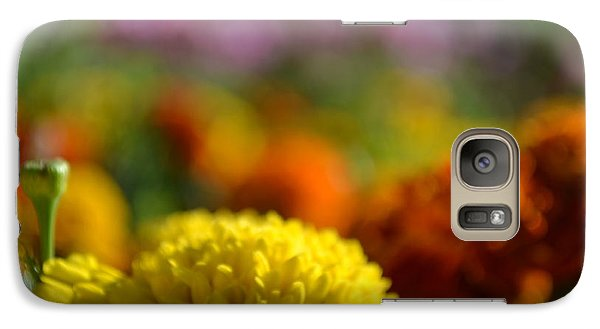 Galaxy Case featuring the photograph Field Of Carnations by Scott Lyons