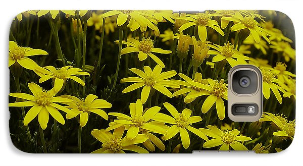 Galaxy Case featuring the photograph Field Of Gold by Lucinda Walter