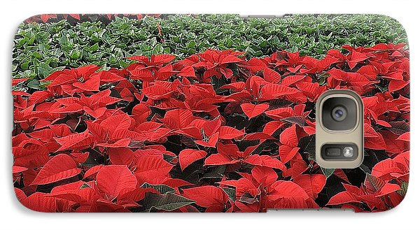 Galaxy Case featuring the photograph Fields Of Poinsettias by Peggy Stokes