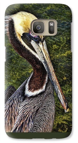 Pelican Close Up Galaxy S7 Case by Paula Porterfield-Izzo