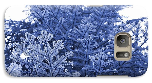 Galaxy Case featuring the photograph Fir Trees After Summer Rain by Amanda Holmes Tzafrir