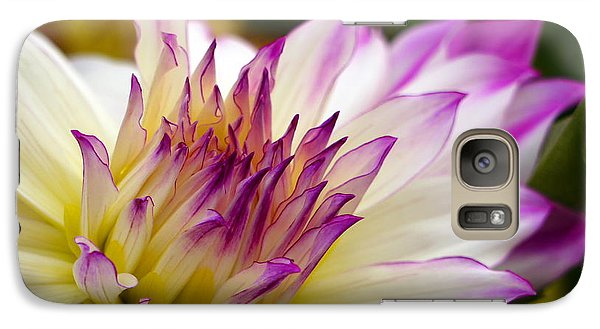 Galaxy Case featuring the photograph Fire And Ice - Dahlia by Jordan Blackstone