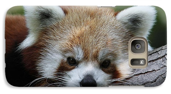 Galaxy Case featuring the photograph Fire Fox by Judy Whitton
