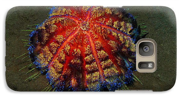 Galaxy Case featuring the photograph Fire Sea Urchin by Sergey Lukashin