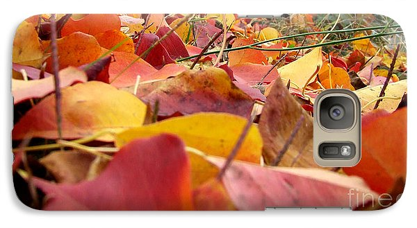 Galaxy Case featuring the photograph First Day Of Fall by Andrea Anderegg