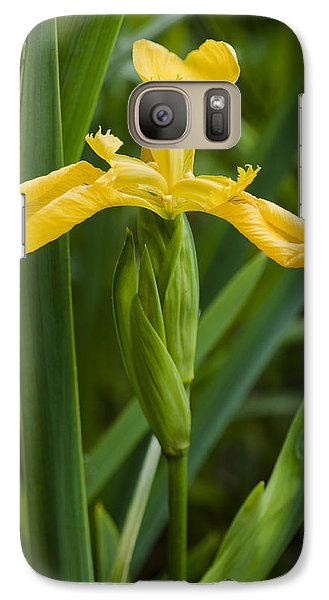 Galaxy Case featuring the photograph Flag Iris by David Isaacson