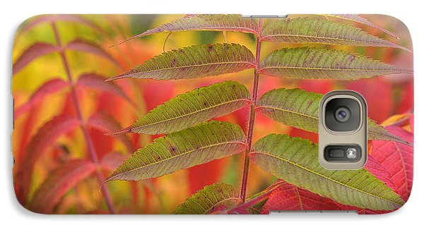 Galaxy Case featuring the photograph Flamboyant Sumac by Arkady Kunysz
