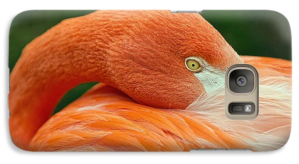 Galaxy Case featuring the photograph Flamingo Closeup by RC Pics