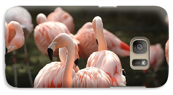 Galaxy Case featuring the photograph Flamingo by Edward R Wisell