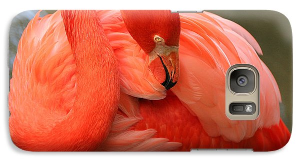 Galaxy Case featuring the photograph Flamingo by Larry Nieland
