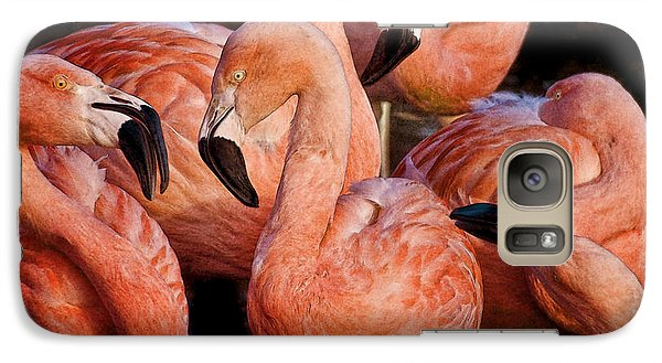 Galaxy Case featuring the photograph Flamingo Lingo by Brian Tarr