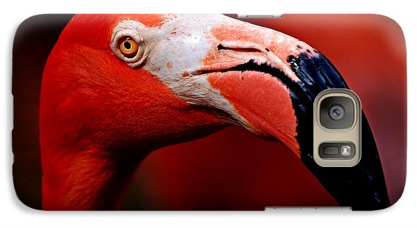 Galaxy Case featuring the photograph Flamingo Portrait by Lorenzo Cassina