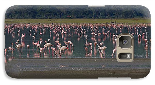 Galaxy Case featuring the photograph Flamingos  - 16x66 by J L Woody Wooden