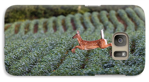 Flight Of The White-tailed Deer Galaxy S7 Case