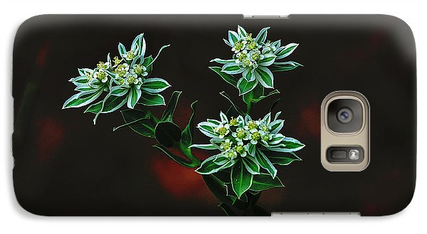Galaxy Case featuring the photograph Floating Petals by John Johnson
