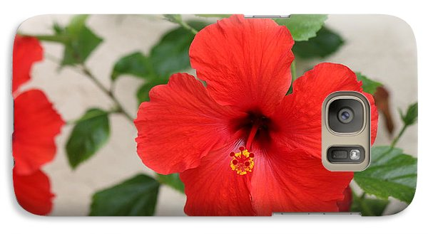Galaxy Case featuring the photograph Floral Beauty  by Christy Pooschke