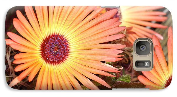 Galaxy Case featuring the photograph Floral by Cathy Mahnke