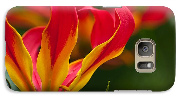 Galaxy Case featuring the photograph Floral Flames by Sabine Edrissi