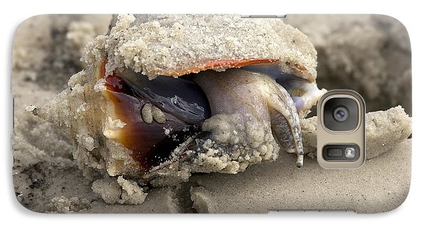 Galaxy Case featuring the photograph Florida Fighting Conch by Meg Rousher