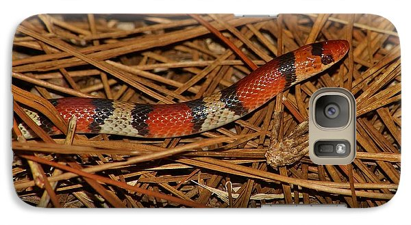 Galaxy Case featuring the photograph Florida Scarlet Snake by Lynda Dawson-Youngclaus